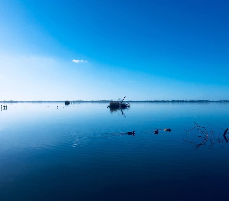 Massaciuccoli - lake