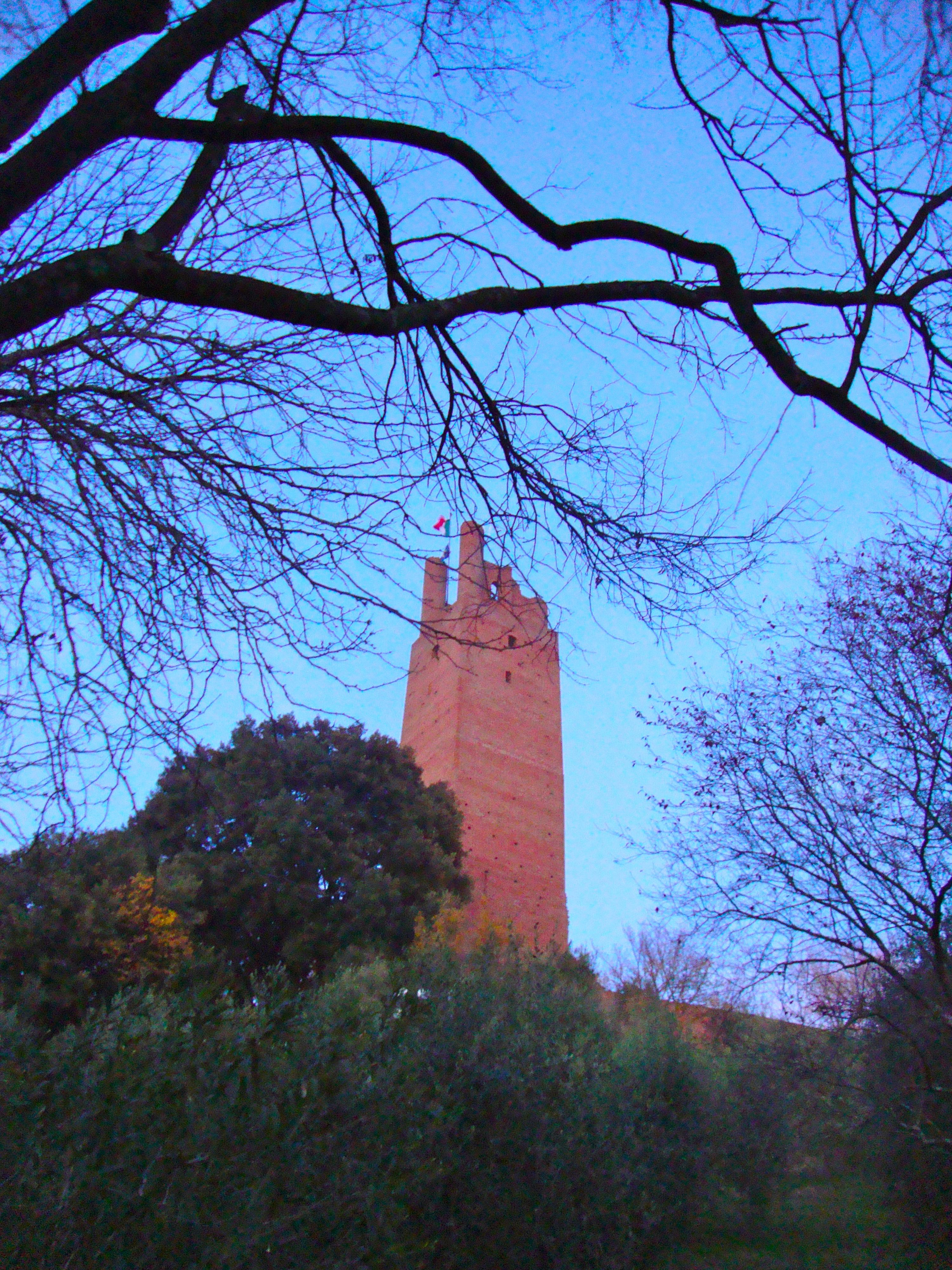 San Miniato_Federico II tower